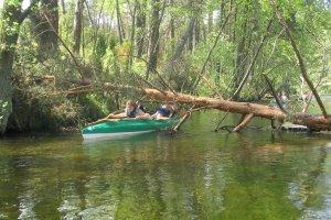 Aktywny Wakacyjny Wypoczynek - Spływ Kajakowy Brdą