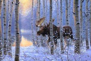 Boże Narodzenie dla Singli nad Biebrzą - biebrzańska przyroda