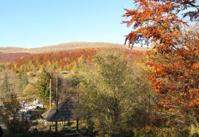 Jesień dla Singli w Bieszczadach