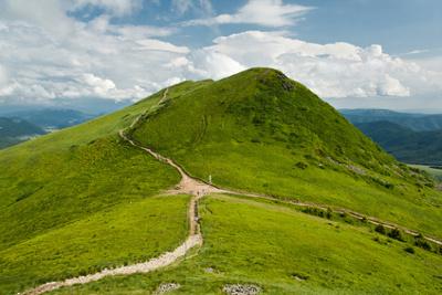 Wakacje dla Singli w Bieszczadach - szlak na Tarnicę