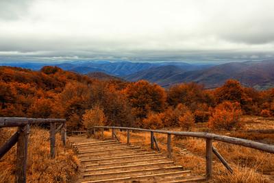 Jesień dla Singli w Bieszczadach - szlak na Tarnicę