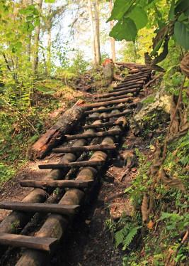Wakacje dla Singli w Pieninach - wycieczka do Słowackiego Raju